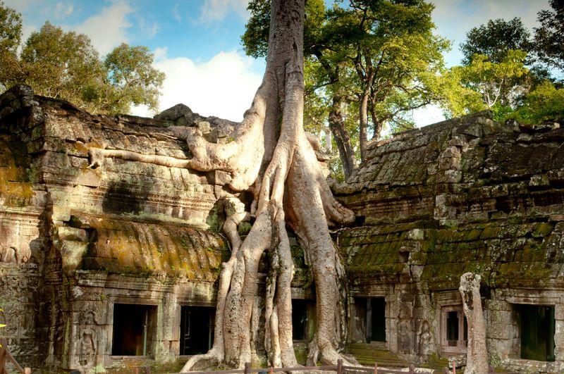 Храм Та Пром в Камбодже