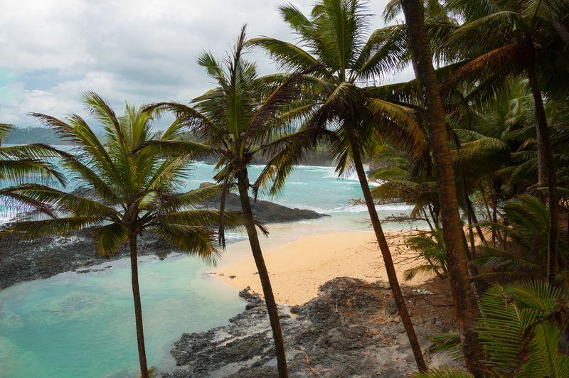 Pemandangan khas Sao Tome dan Principe, pantai cantik dengan air laut berwarna biru kehijauan