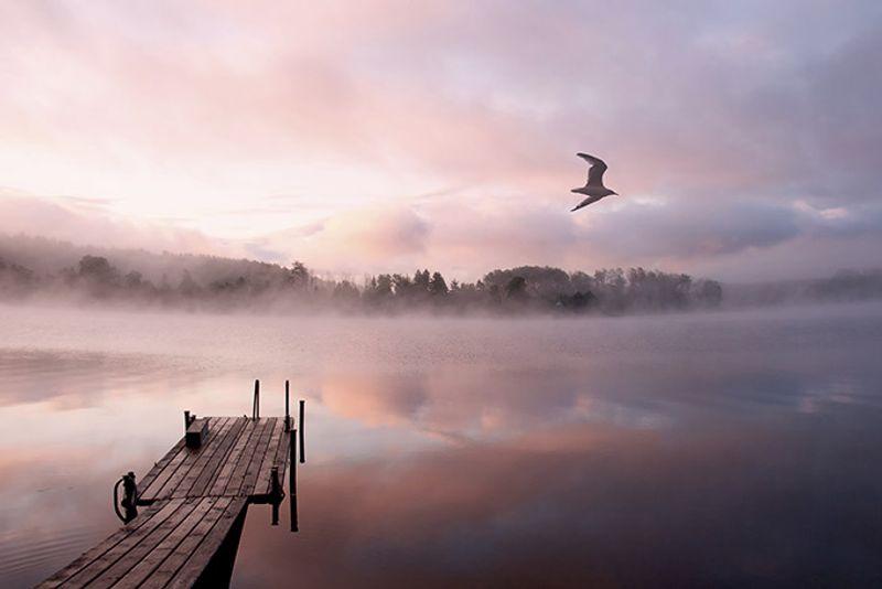 Утренний туман над озером, Россия