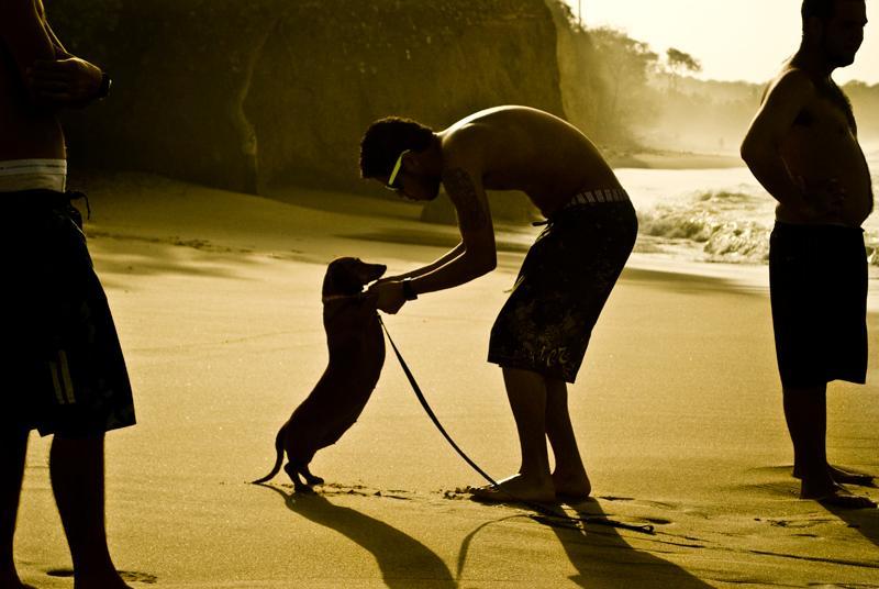 hombre con perro en la playa