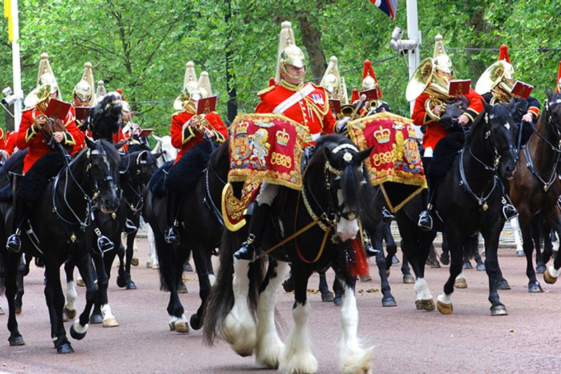 Всадники на параде Trooping the Colour в Лондоне