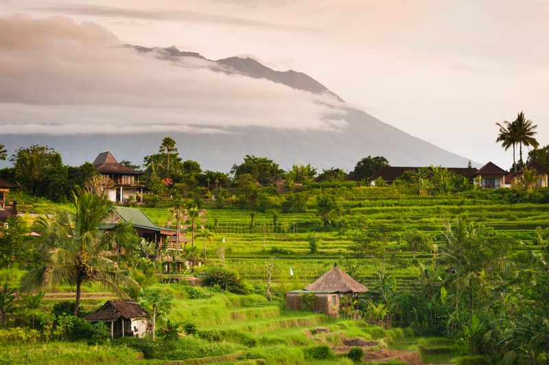 Serene rice terraces in Bali with a mountain in the background