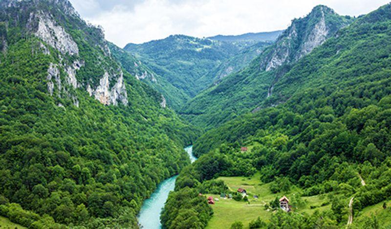 Река Тара в национальном парке Дурмитор, Черногория