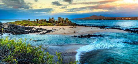Paisaje de galápagos