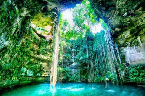 Entspannt in der Ik Kil Cenote und lasst euch im glasklaren Wasser treiben.