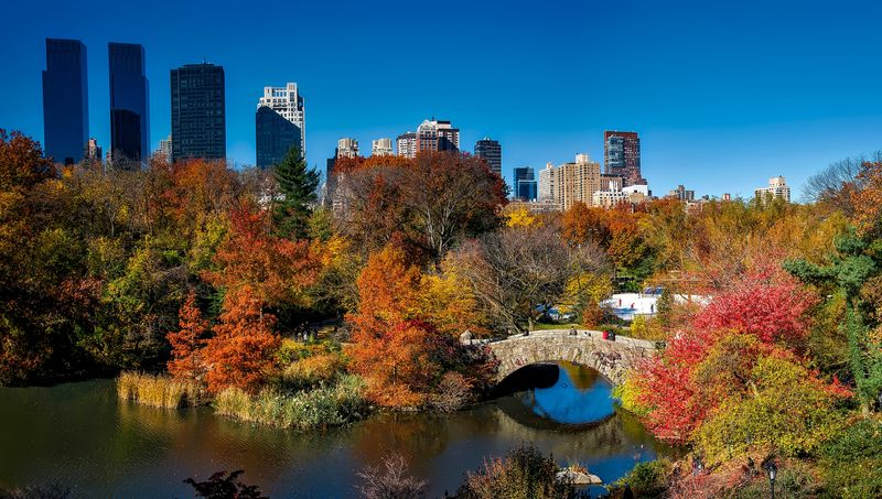 Cosa vedere a New York: Central Park