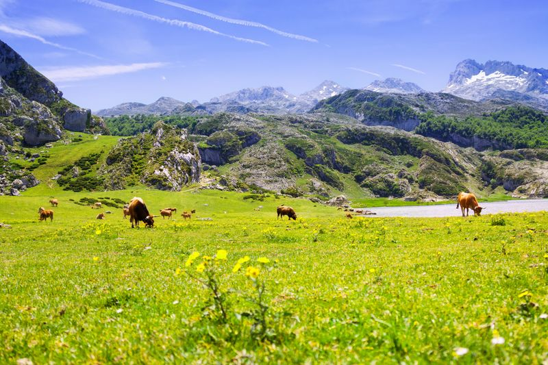 Asturias, destino ideal para vacaciones en agosto