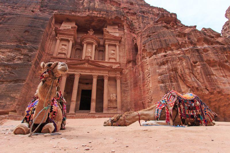 Невыносимое пекло в Иордании, страдают даже верблюды