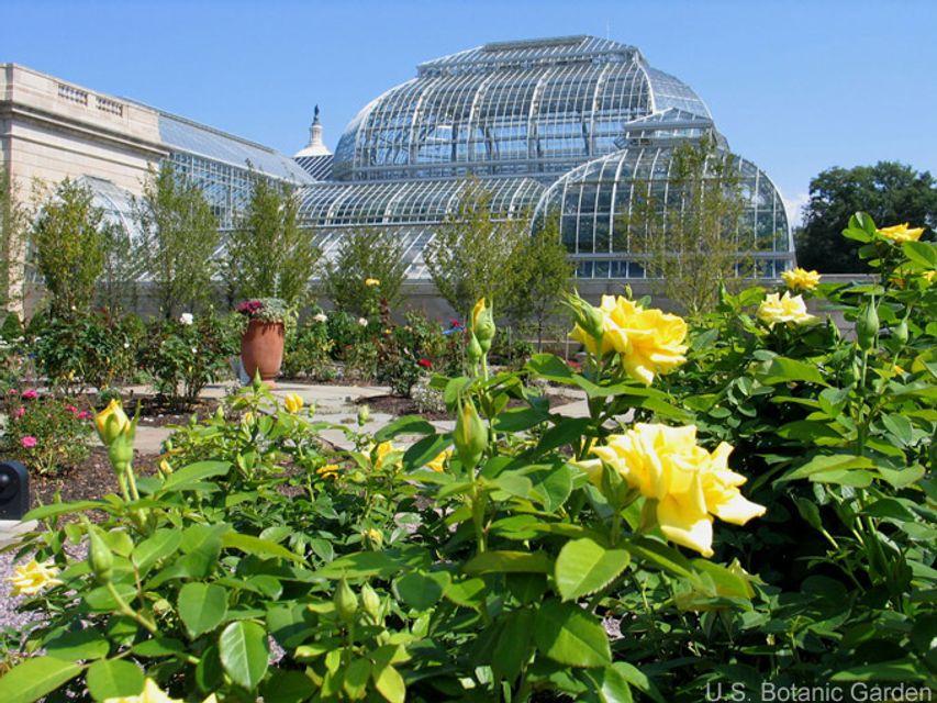 United States Botanic Garden U2013 Washington, D.C.