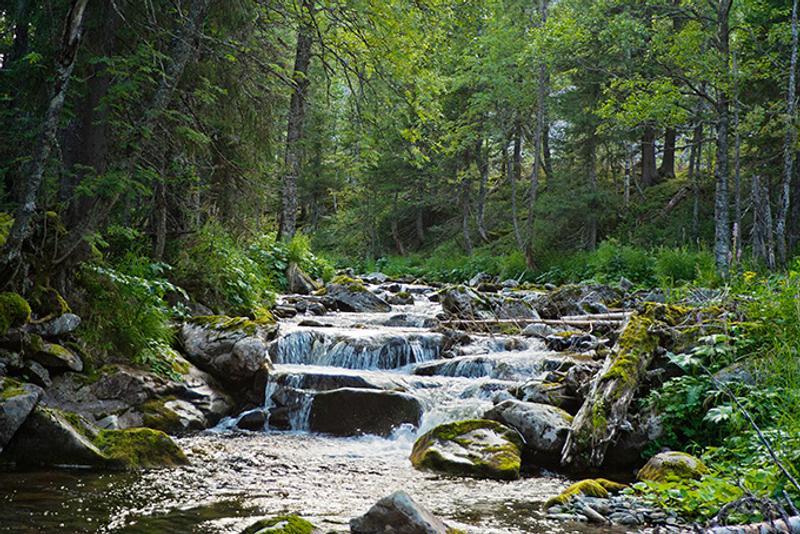 Лесной водопад на реке Жилаган, Пермь, Россия