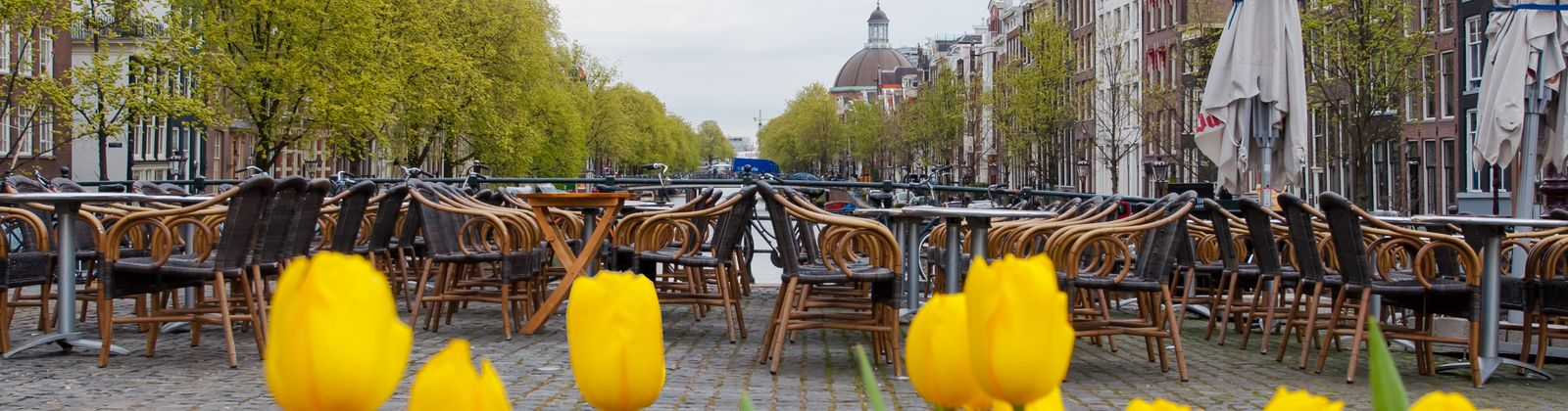 Amsterdam's finest cafes and coffee shops