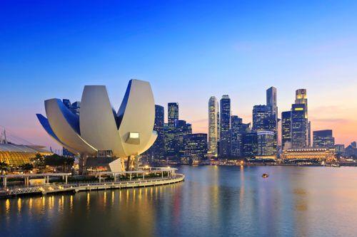 シンガポール行きの航空券
