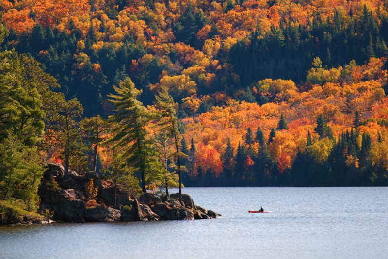 [Image: 680-kayaking-algonquin-provincial-park-o...quality=75]