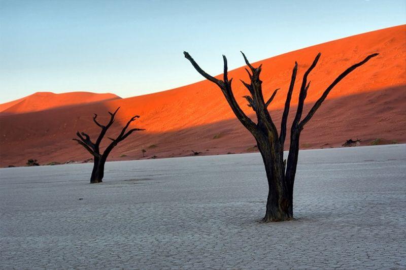 mar de arcilla de deadvlei en namibia