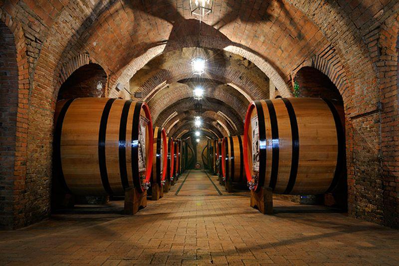 Винные бочки в погребе винокурни