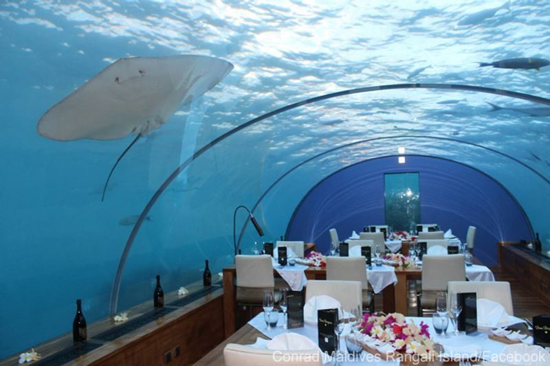 10 most extreme restaurants around the world for Ithaa prices