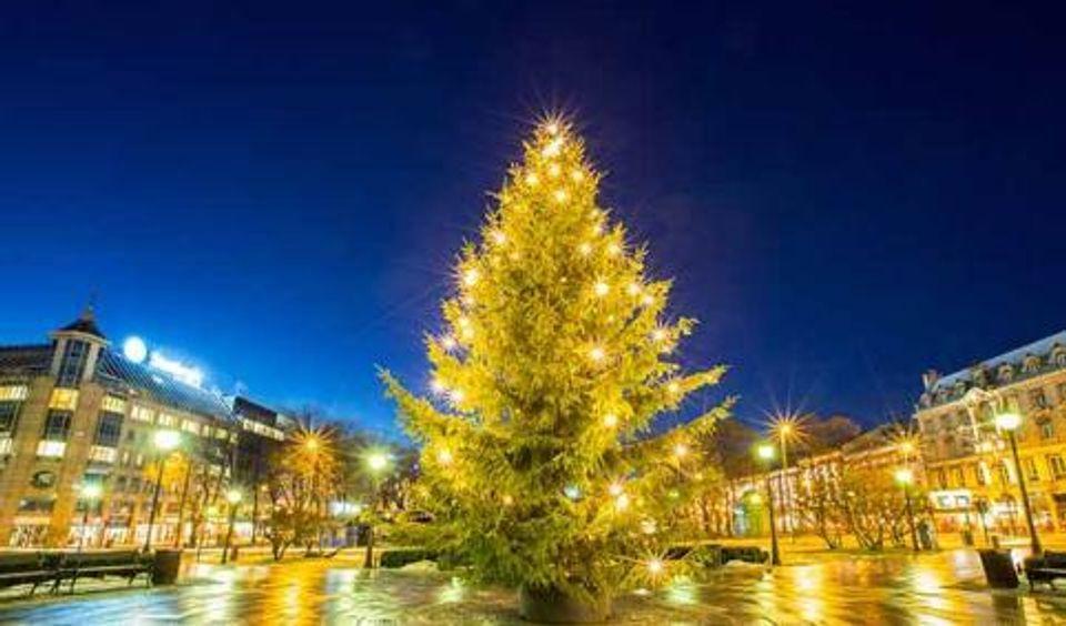 ver arboles de navidad