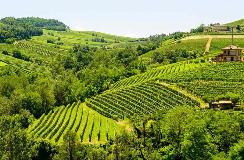 Posti da visitare in Italia: Langhe e Roero