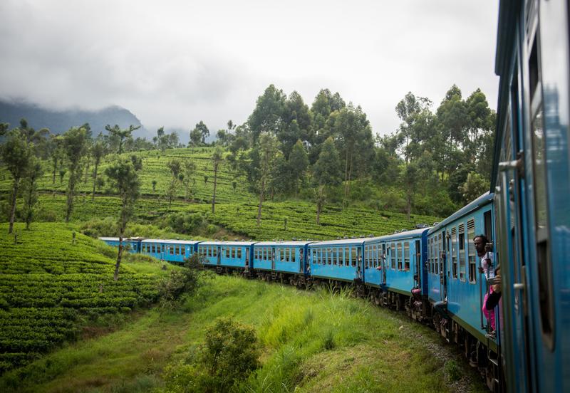 Поезд в Канди, идущий через чайные плантации Нувара-Элия, Шри-Ланка