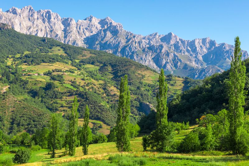 Asturias mountain and forest scenery