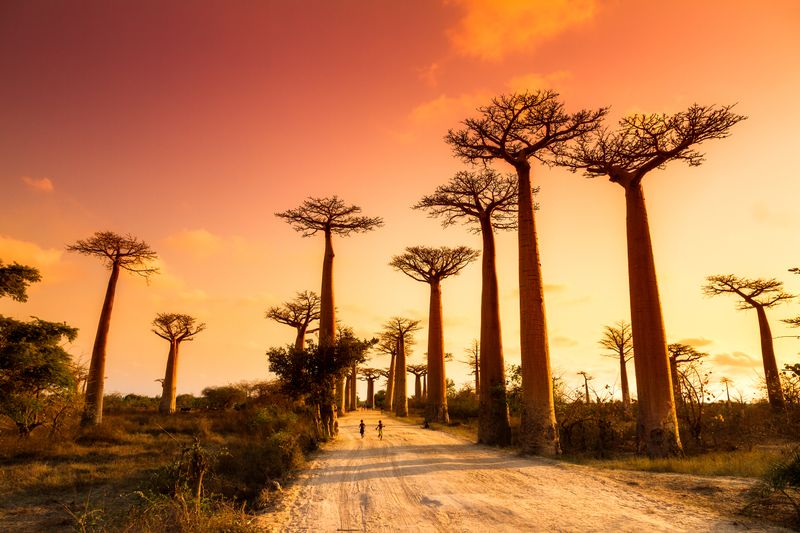 Capodanno al caldo: Madagascar