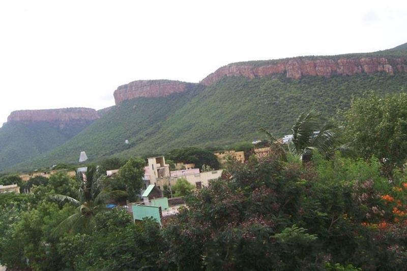 Tirupati darshan: TTD darshan tips for the best Balaji darshan