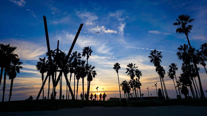 Qué hacer Los Angeles: Muscle Beach