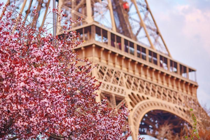 Viajar con Mama a París