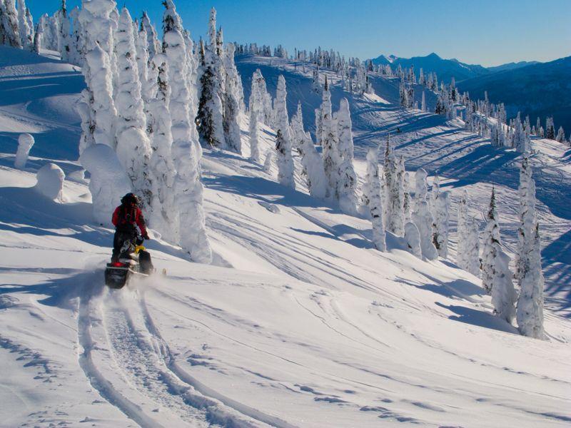 Карельские леса зимой