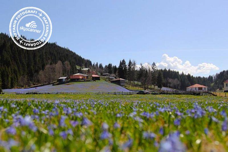 Kadıralak Yaylası - Trabzon