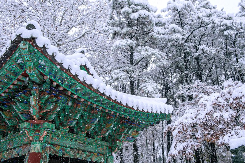 Snowy landscapes atop Seoul's palace pagoda