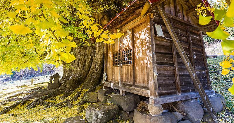 เมืองนากาโน่ (Nagano) ญี่ปุ่น