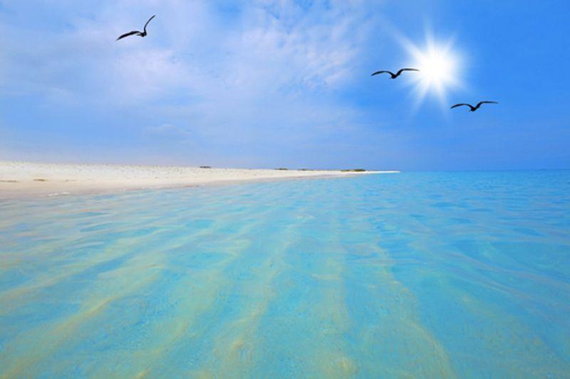 อารูบา ประเทศดัชต์แอนทิลลิส  (Aruba, Dutch Antilles)