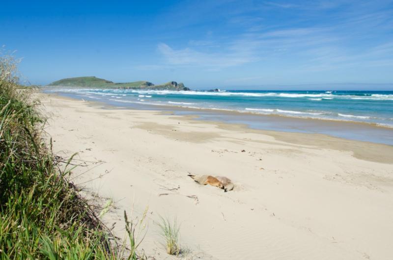 Le spiagge deserte