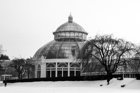 jardín botánico de nueva york en invierno