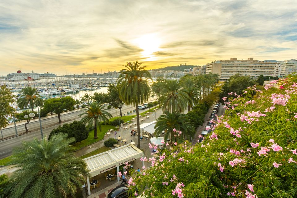 Car hire in Palma