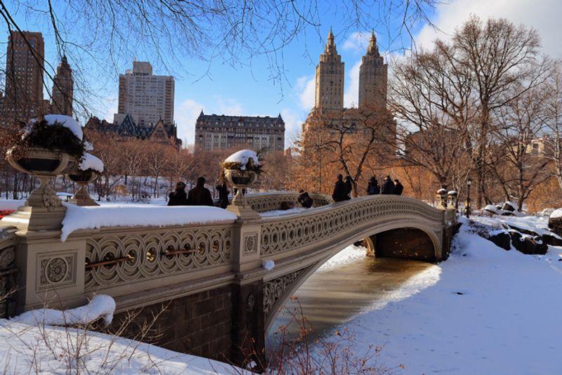 Центральный парк в Нью-Йорке зимой, США