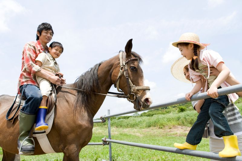 Ranch holidays in Texas are becoming increasingly popular