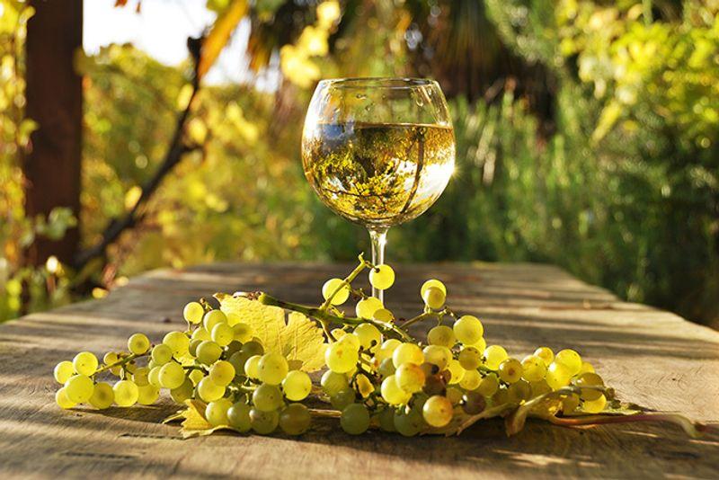 Бокал белого вина и гроздь винограда