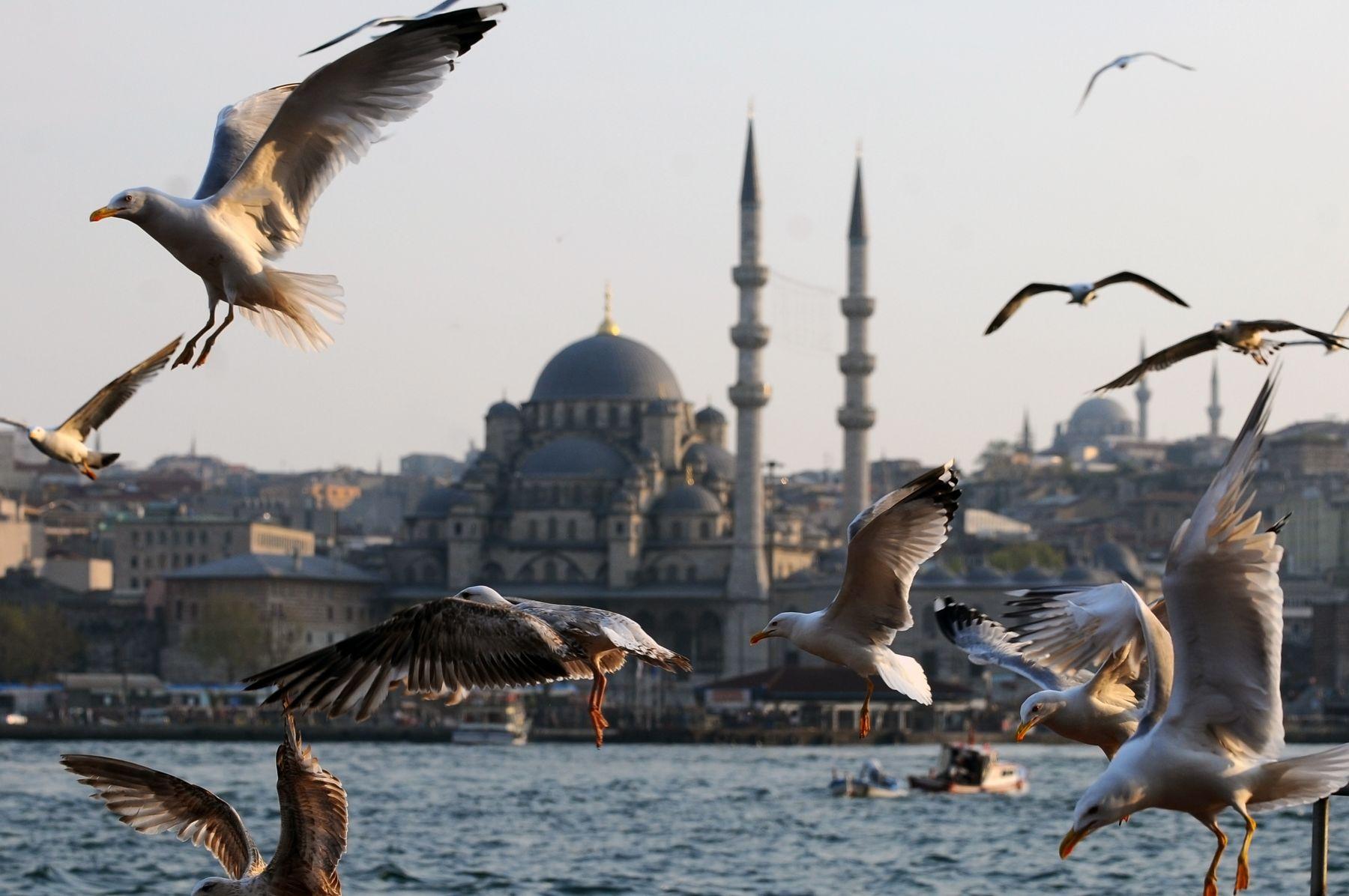 Недорогой отдых в Стамбуле