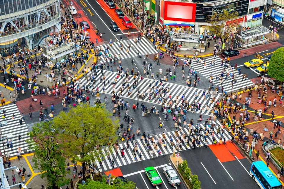 Shibuya zebra crossing - best things to do in Tokyo