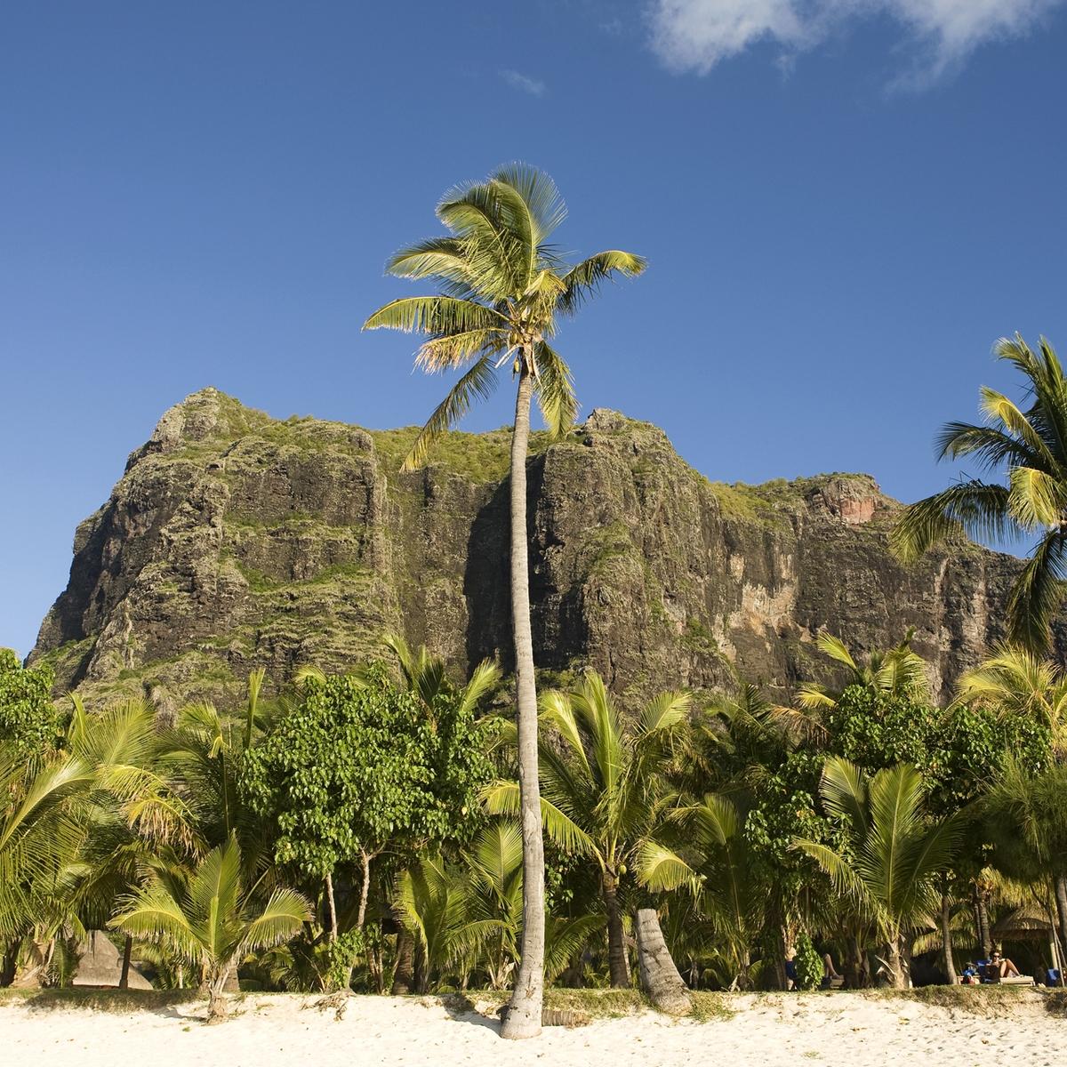 Die schönsten Reiseziele Afrikas: Mauritius