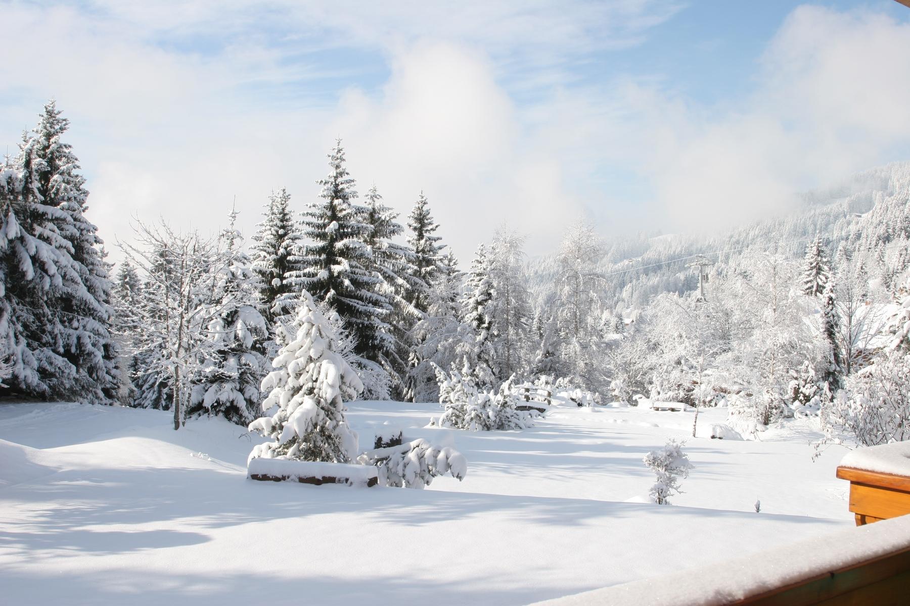 De la neige sur la montagne