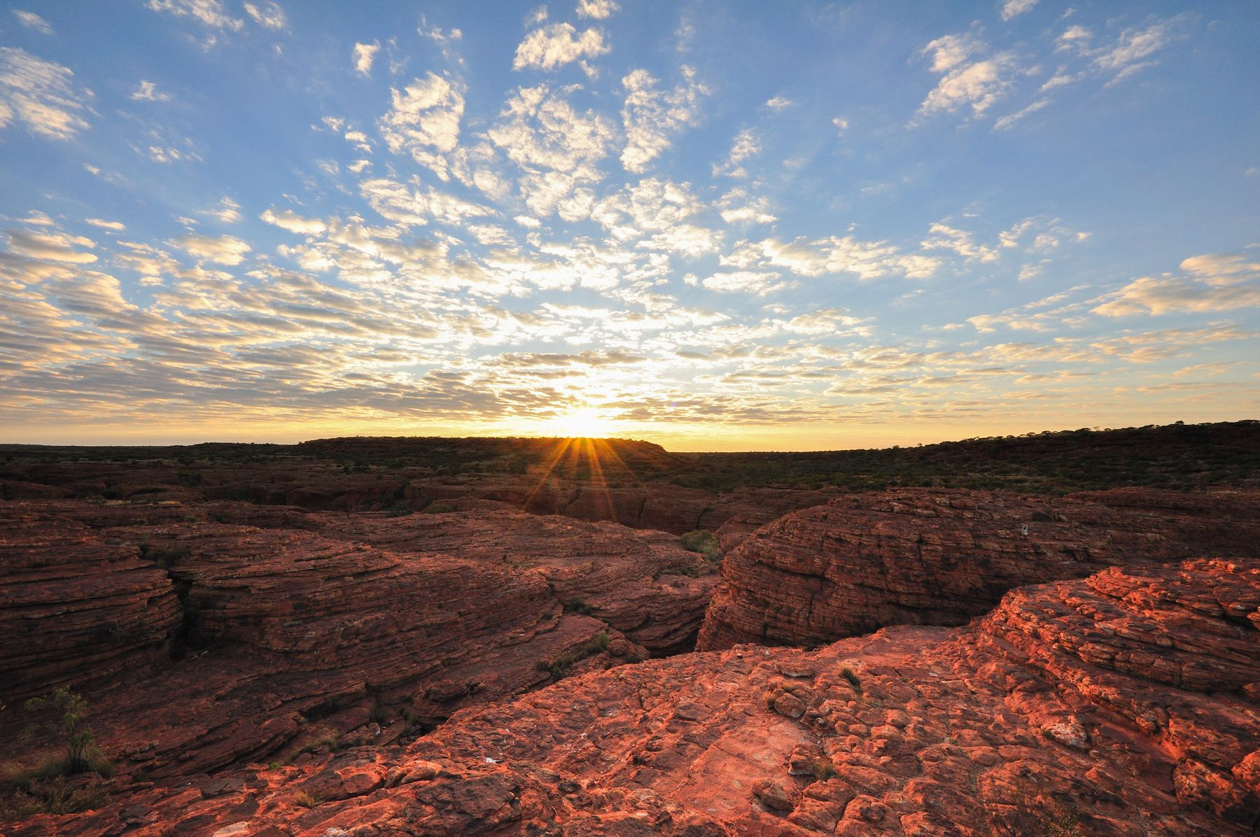 Sun setting over the Australian outback