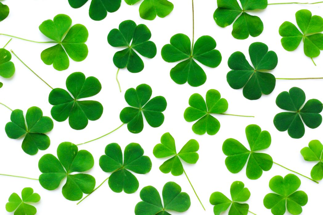t Patrick's Day 2020 - Best places to celebrate in Ireland