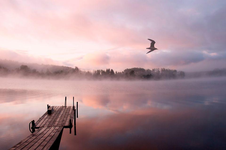 Куда выехать на природу осенью из Москвы: озера в Тверской области