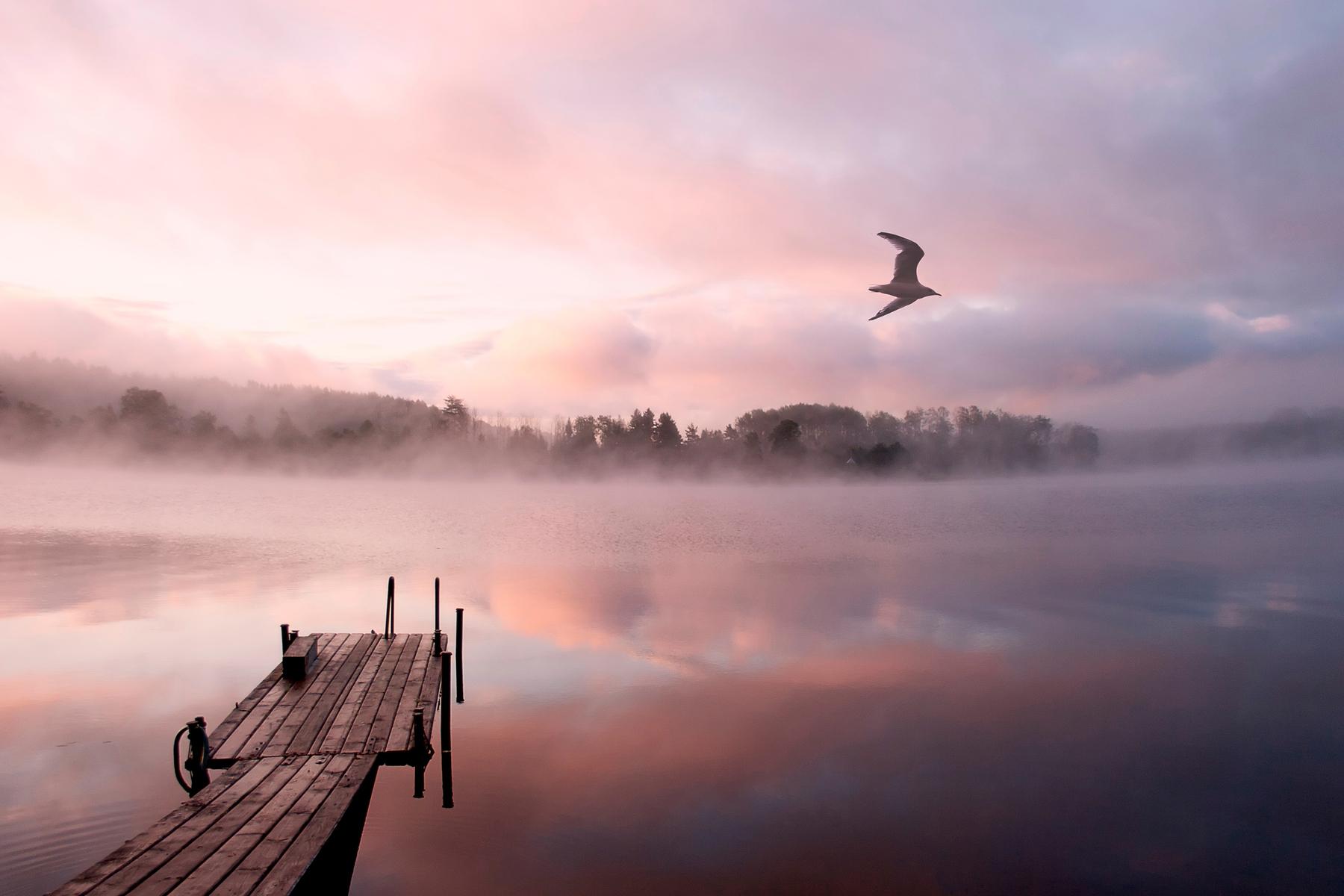 Розовый рассвет над Ладожским озером в Республике Карелия, Россия