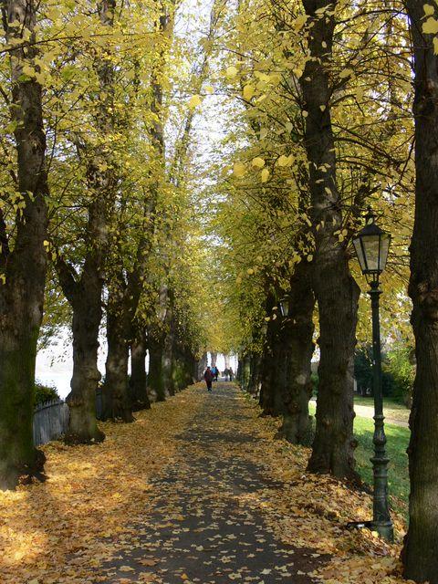 Kaiserswerth, places to visit in Düsseldorf