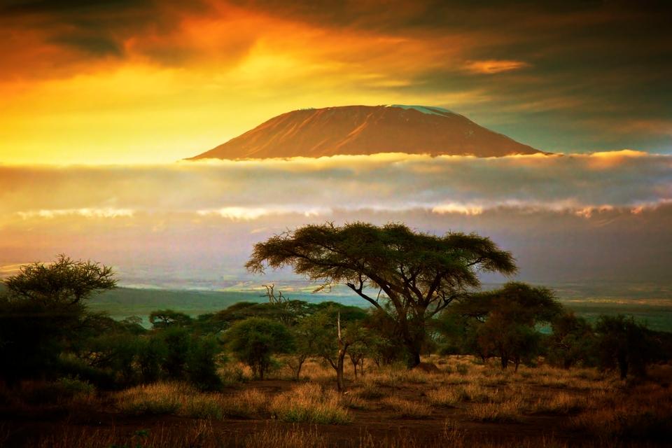 Safari in Africa - vista sul Kilimangiaro al tramonto