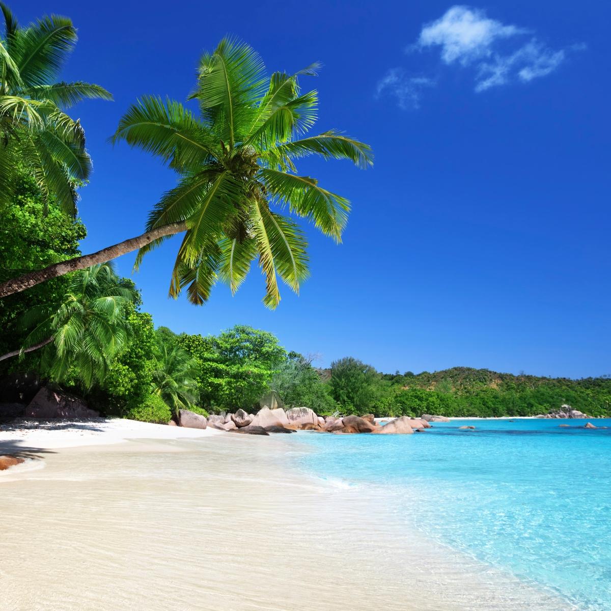 Die schönsten Reiseziele Afrikas: Seychellen